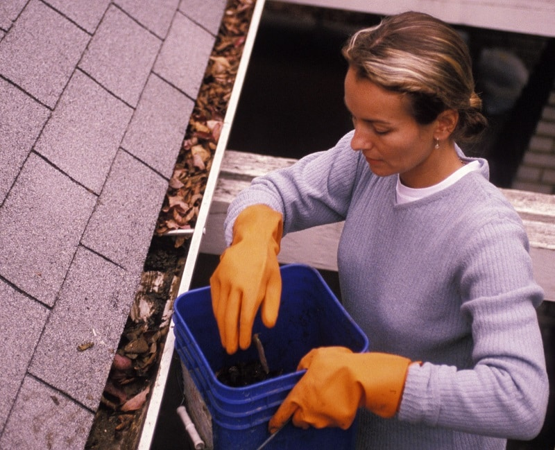 spring gutter cleaning maintenance