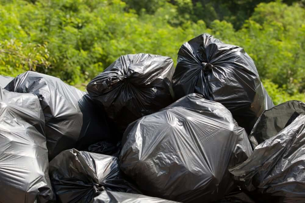 tips for how to take trash to the dumpster